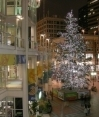 Westlake Mall at Xmas